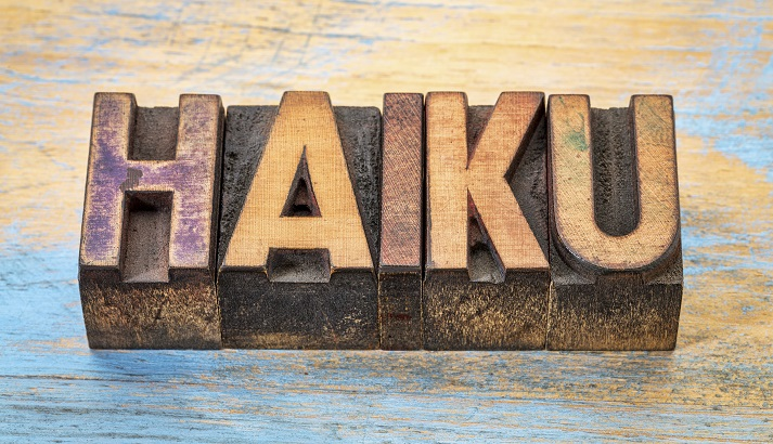 I Can Haiku, Can You? Educational Resources K12 Learning