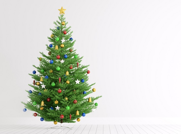 All About Christmas Educational Resources K12 Learning