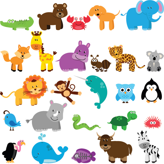 Animal Classification: Final Project Educational Resources K12 Learning