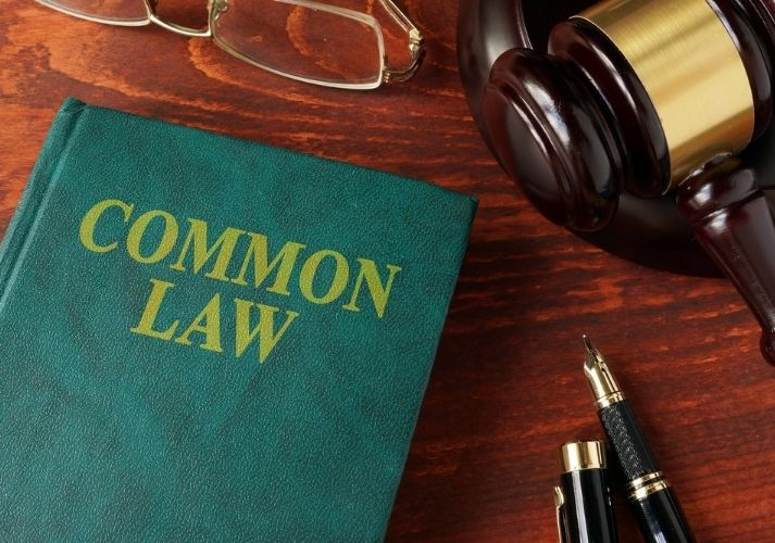 U.S. Common Law Educational Resources K12 Learning