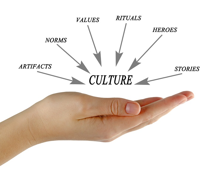 Components of Culture Educational Resources K12 Learning