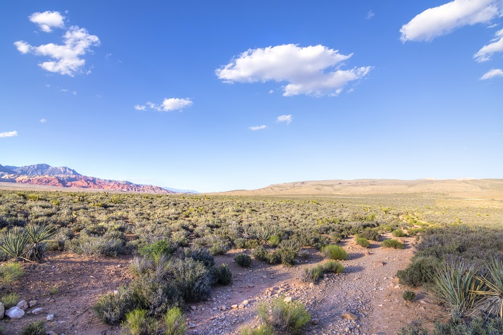 Deserts Educational Resources K12 Learning