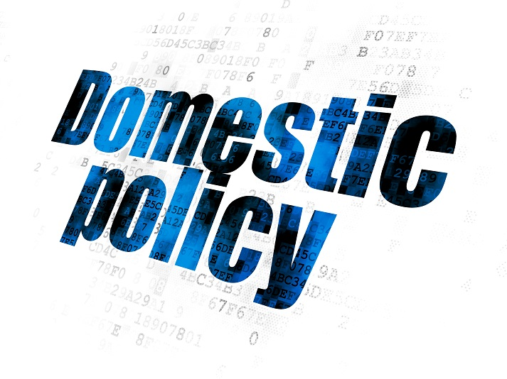 Domestic Policy Educational Resources K12 Learning