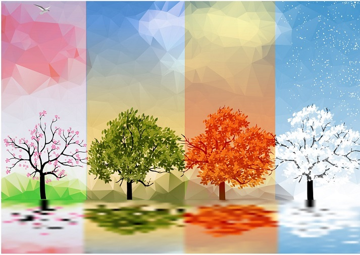 Savor the Seasons and Their Role on Earth! Educational Resources K12 Learning