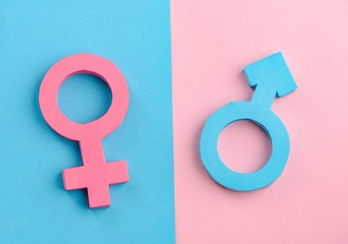 Cracking Down on Gender Stereotypes Educational Resources K12 Learning