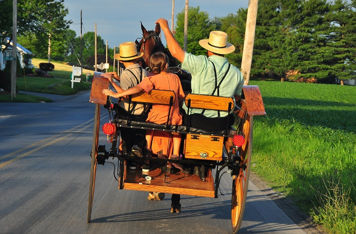 The Amish Educational Resources K12 Learning