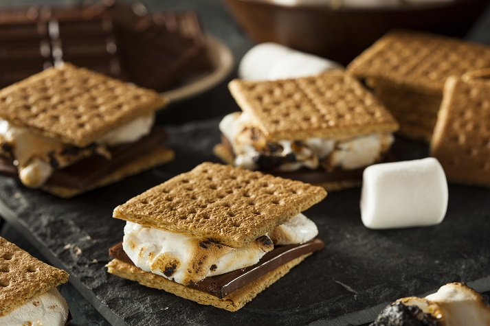 How to Make S'mores Educational Resources K12 Learning