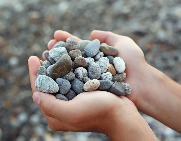 Nature Rocks! Seriously, It Does! Educational Resources K12 Learning