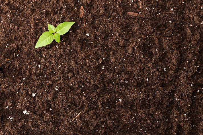 Nutrients in Soil Educational Resources K12 Learning