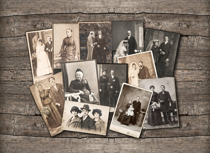 Genealogy: Putting It All Together! Educational Resources K12 Learning