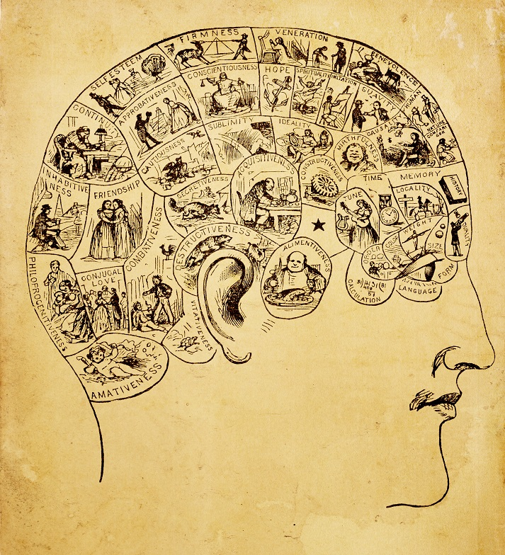 The Forgotten Science of Phrenology Educational Resources K12 Learning