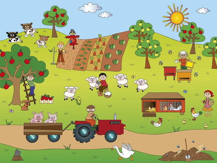 Using Pictures to Tell a Story Educational Resources K12 Learning