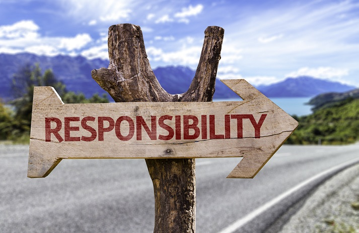 Citizenship and Responsible Participation Educational Resources K12 Learning