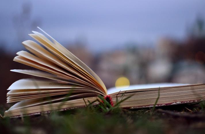 The Poetry of Robert Penn Warren Educational Resources K12 Learning