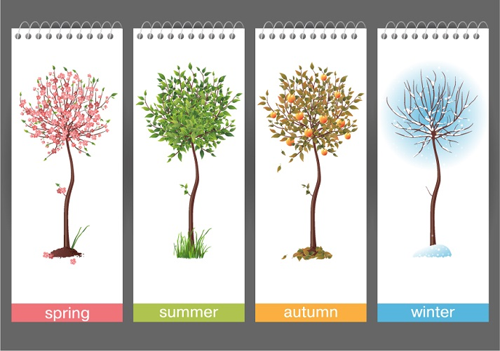 Seasons Change Educational Resources K12 Learning