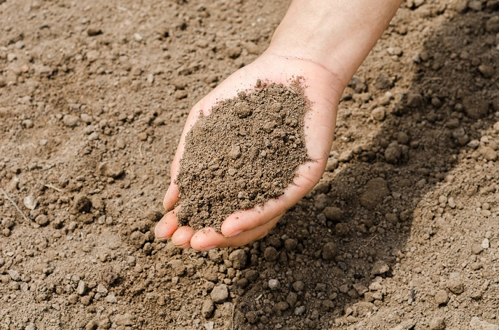 The Dirt on Soil Educational Resources K12 Learning