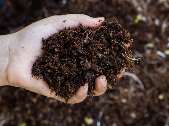 Why Is Soil Important? Educational Resources K12 Learning