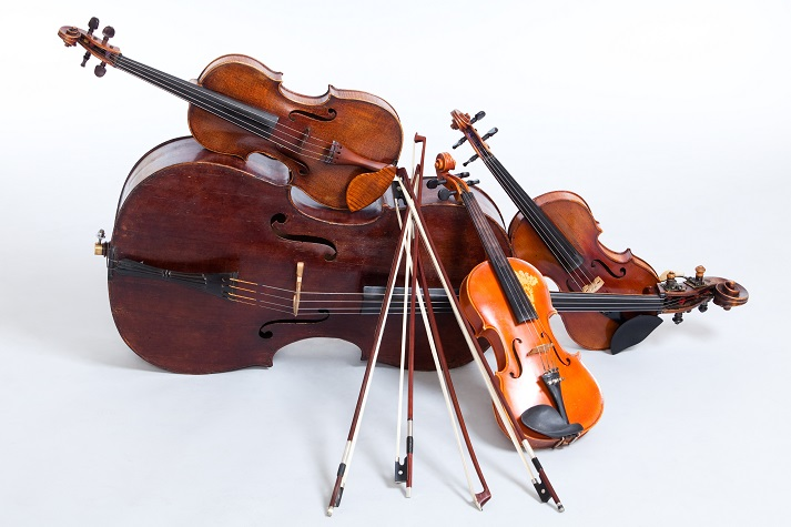 Stringed Instruments Educational Resources K12 Learning