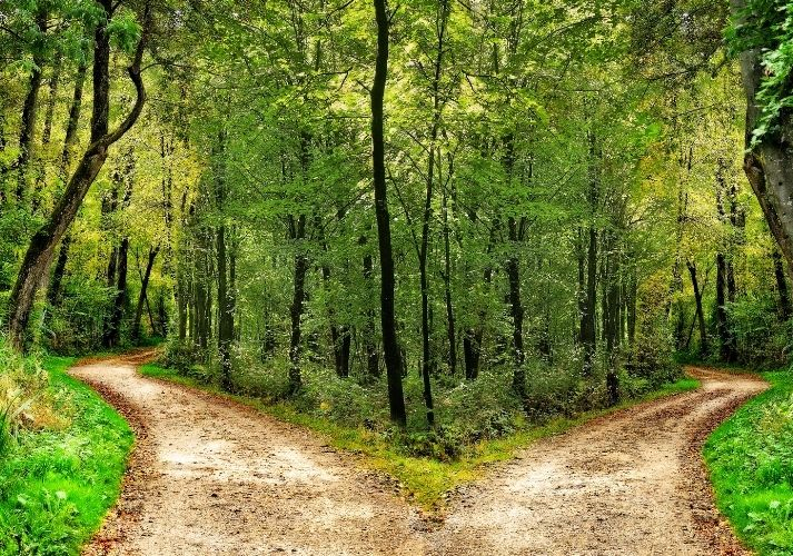 Analyzing Poetry: ''The Road Not Taken'' Educational Resources K12 Learning