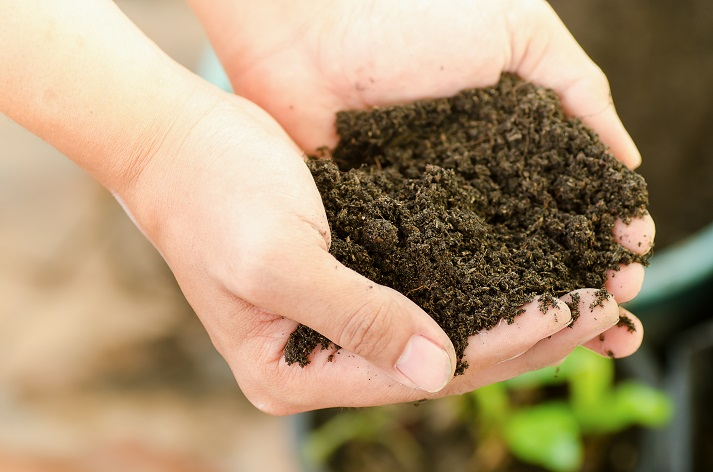 What Is Soil Made of? Educational Resources K12 Learning